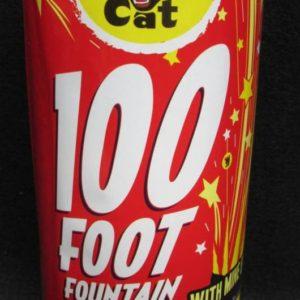 Black Cat 100 Foot Fountain